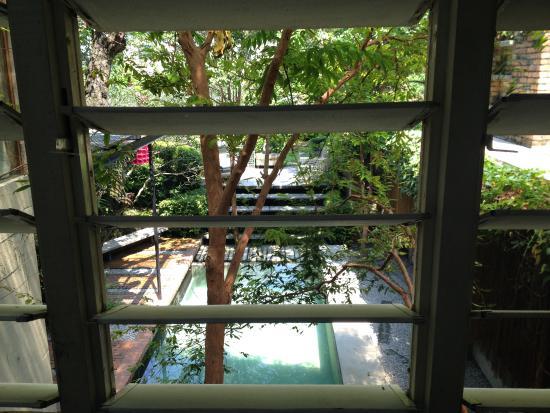 Sekeping Tenggiri : Pool view from the room