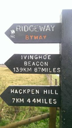 Wiltshire, UK: The distinctive signposts