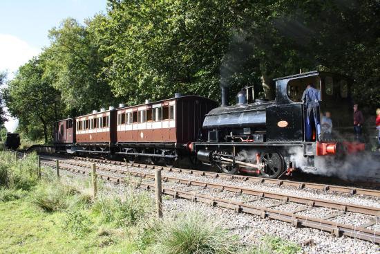 Foxfield Railway: At Dilhorne park