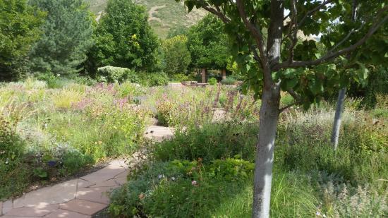 The Orangerie Picture Of Red Butte Garden Salt Lake City Tripadvisor