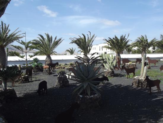 Centro de Arte Canario: Jardines