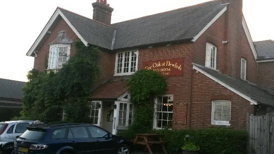 The Oak at Dewlish