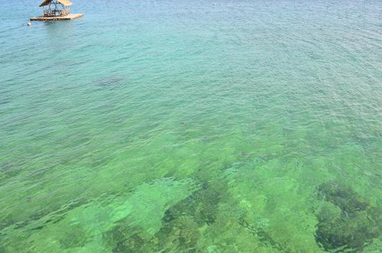 Camotes Flying Fish Resort : Crystal clear sea!!!