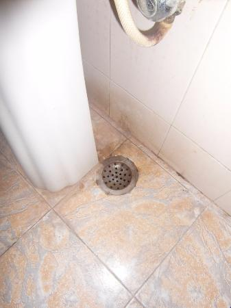 Maurya Heritage Hotel: keimiger Abfluss unter dem Waschbecken
