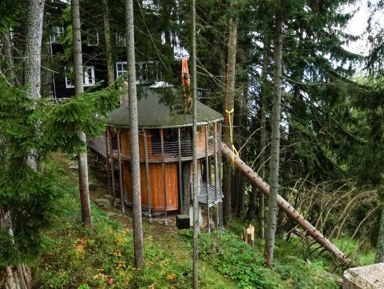 hotel grafenast sauna au enbereich bild von hotel. Black Bedroom Furniture Sets. Home Design Ideas