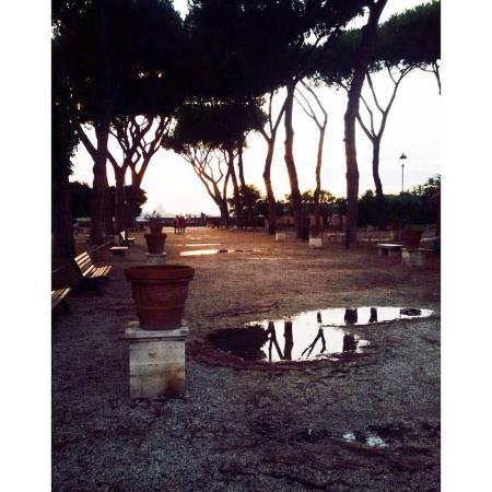 Giardino Degli aranci Roma - Foto di Parco Savello, Roma - TripAdvisor