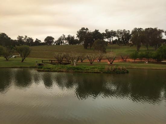 Beautiful Sunday @ The Millbrook Winery