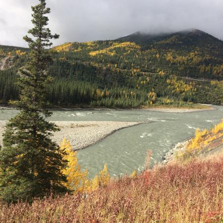 Denali Princess Wilderness Lodge: View from lodge room   Nenana river