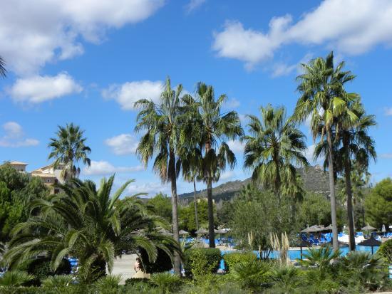 Garbi Cala Millor: Zicht uit kamer op tuin/zwembad