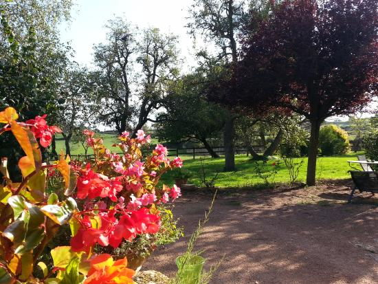 Lournand, France: Vista sul giardino