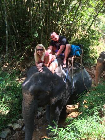 Amazing Bukit Safari