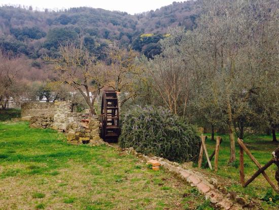 Azienda Il Giardino di Diana