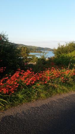 Cornamona, Irlande : Within walking distance Loch Corrib