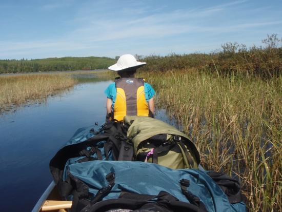 อิลิ, มินนิโซตา: Canoeing amid the rice paddies