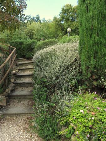 Le Valli: verso l'appartamento Rosmarino, fra le erbe aromatiche