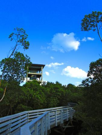 Anne Kolb Nature Center Hollywood