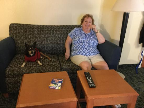 Hampton Inn Schenectady : Middle of the road-trip stay ...
