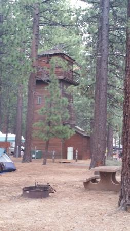 Campground by the Lake: tree house