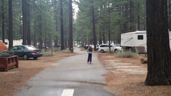 Campground by the Lake: road on b loop