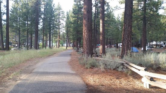 Campground by the Lake: road in camp