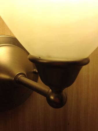 Holiday Inn Express Eagle Pass: bug on bathroom light fixture