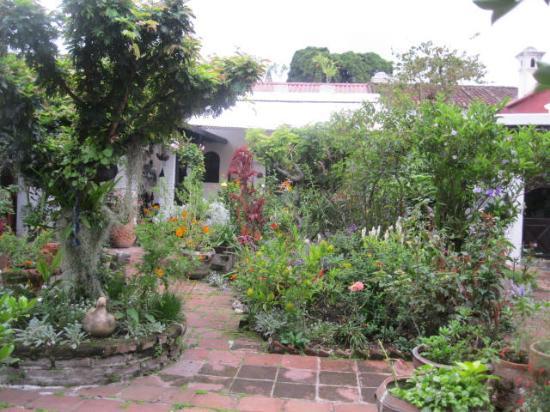 Casa Marie: Lindo jardín de la casa