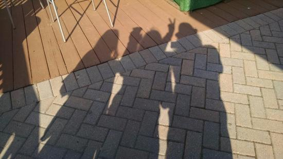 Inlet Cafe: Shadow Pics