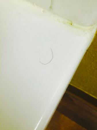 Extended Stay America - San Francisco - San Carlos: The pubic hair in the shower!