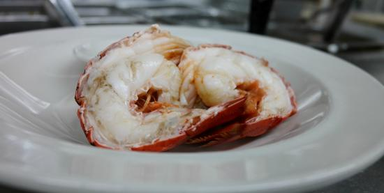 Little Compton, RI: sakonnet lobster tail