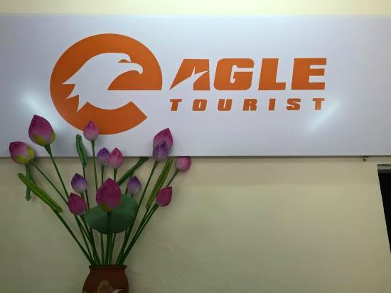 Eagle Tourist