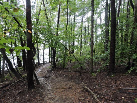 Huddleston, VA: nice trails.....