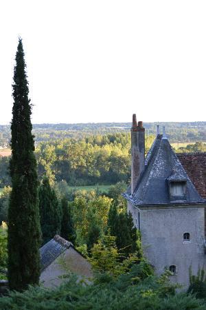 Chateau de Nazelles Amboise: Chateau Overlook