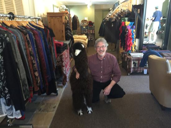 Nederland, CO: Roy amongst his lovely alpaca garments.