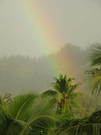 Moorea Fare Miti: The place is till gorgeous even during a rain storm