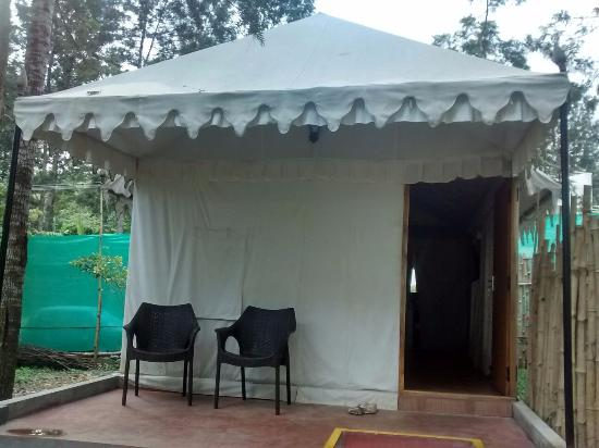 WOW Bison Woods Executive tent & Executive tent - Picture of WOW Bison Woods Yercaud - TripAdvisor