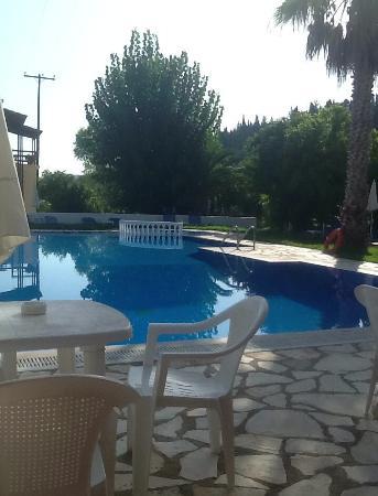 Takis & Efi Apartments: Pool from bar