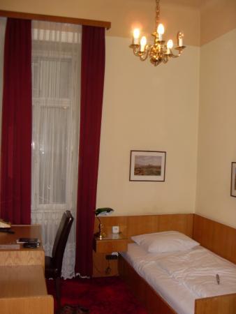 Hotel Furstenhof: Single Room
