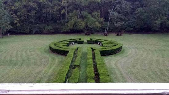 Woolwine, VA: View from the 2nd floor porch - hedge art and Rock Castle Creek in the background