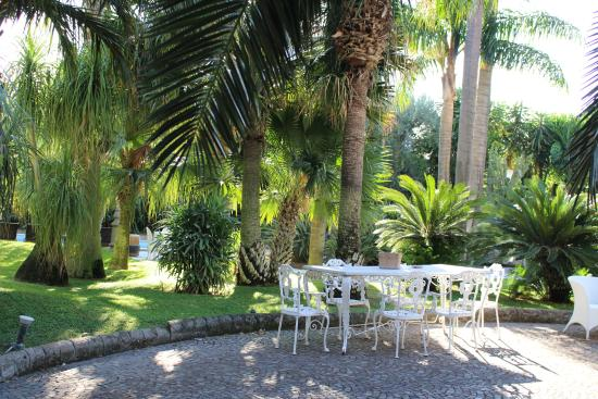 Villa dei D'Armiento: The gardens with a view of the pool