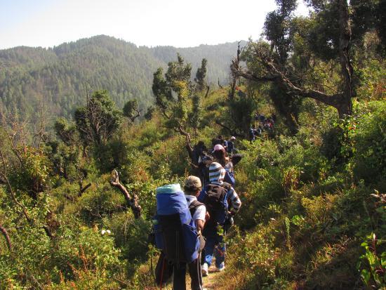 MHE Himalayan Camp, Chamba : Trekking