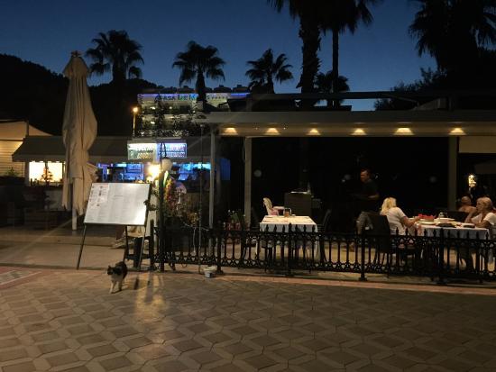 Beach Wood Villas Hotel