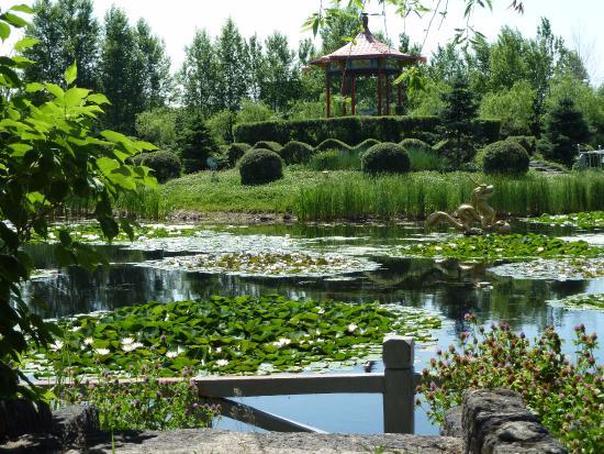 Wudalianchi (Five Big Linking Lakes) : Уникальная природа