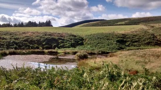 Carfraemill : Farmland setting