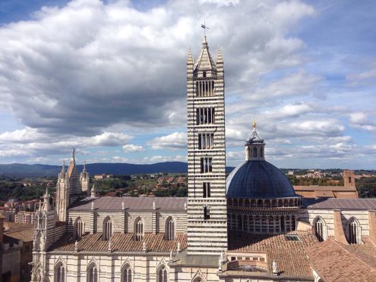 سيينا, إيطاليا: Cripta del Duomo di Siena