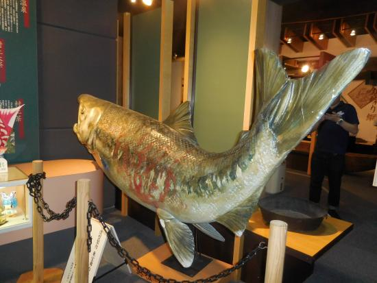 Iyoboya Kaikan: Salmon