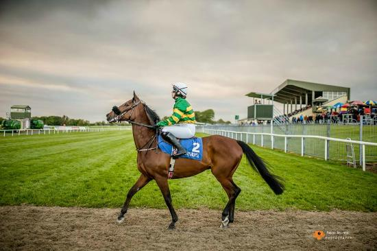 Ballinrobe, İrlanda: Entertaining Racing