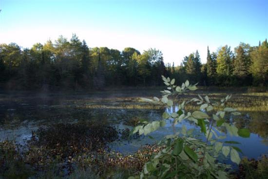 Shambhala Bed and Breakfast: The lake