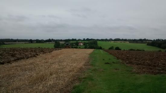 Suffolk, UK: View from the footpath to Packway farm
