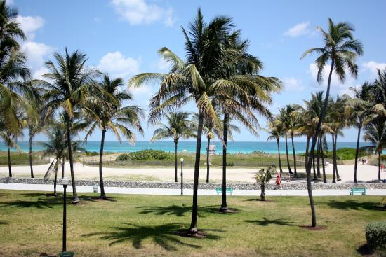 Cardozo Hotel Ocean Drive View