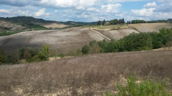 Montespertoli, Italia: vue des environs. de La Mandrie di Ripalta
